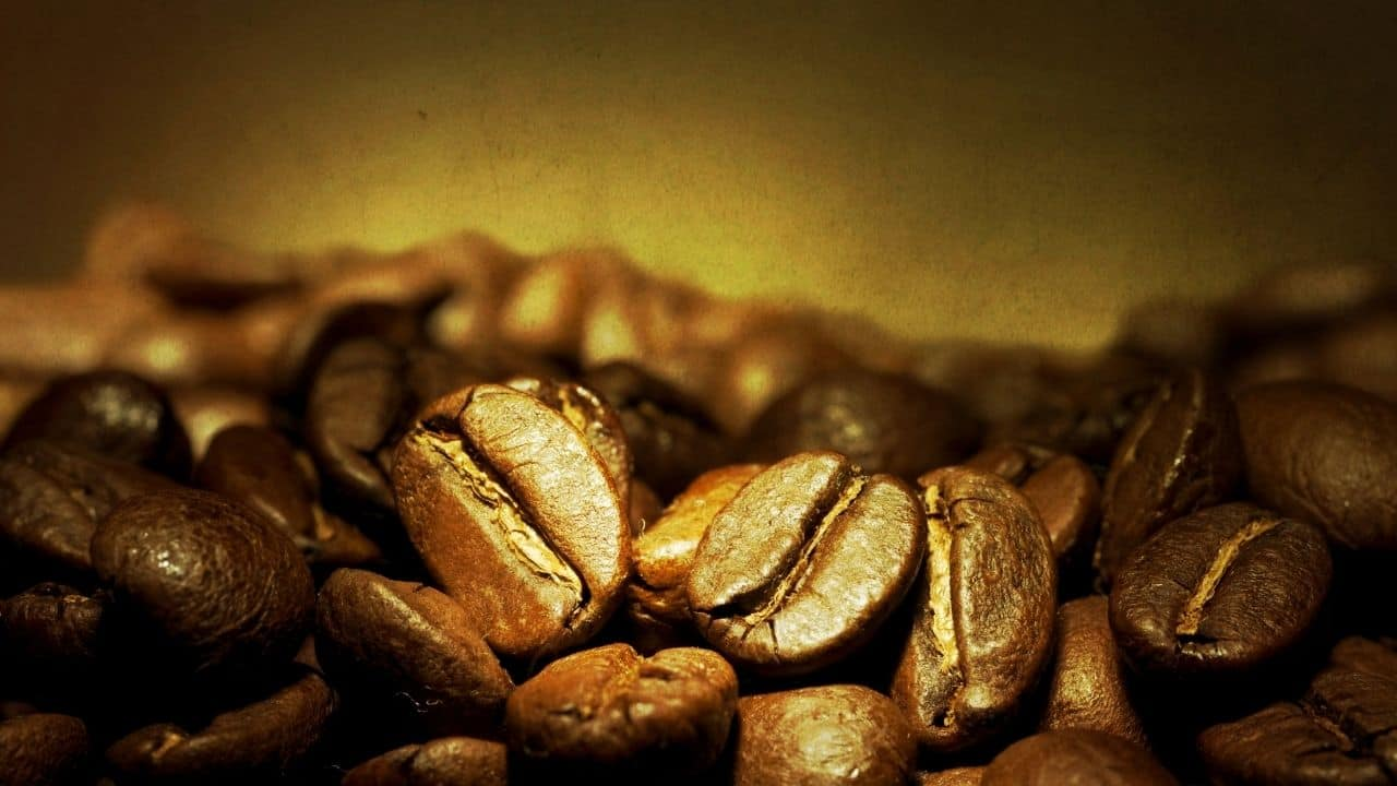 blonde espresso is a lighter golden roast